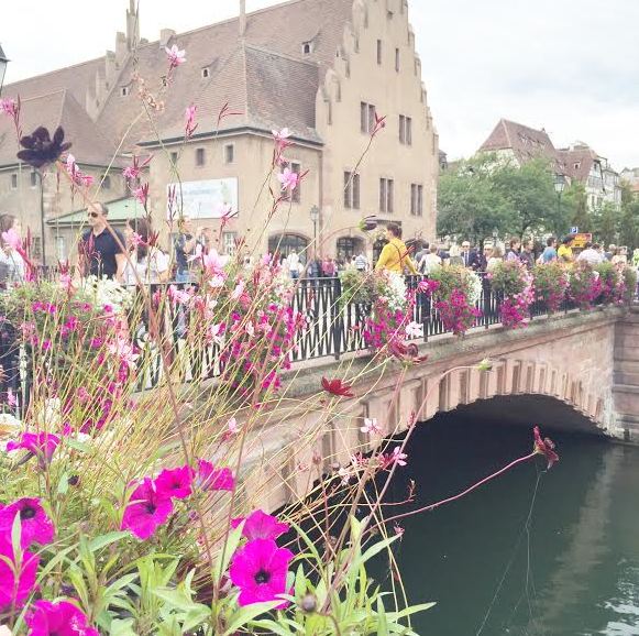 Flowers&Bridges 4- Strasbourg