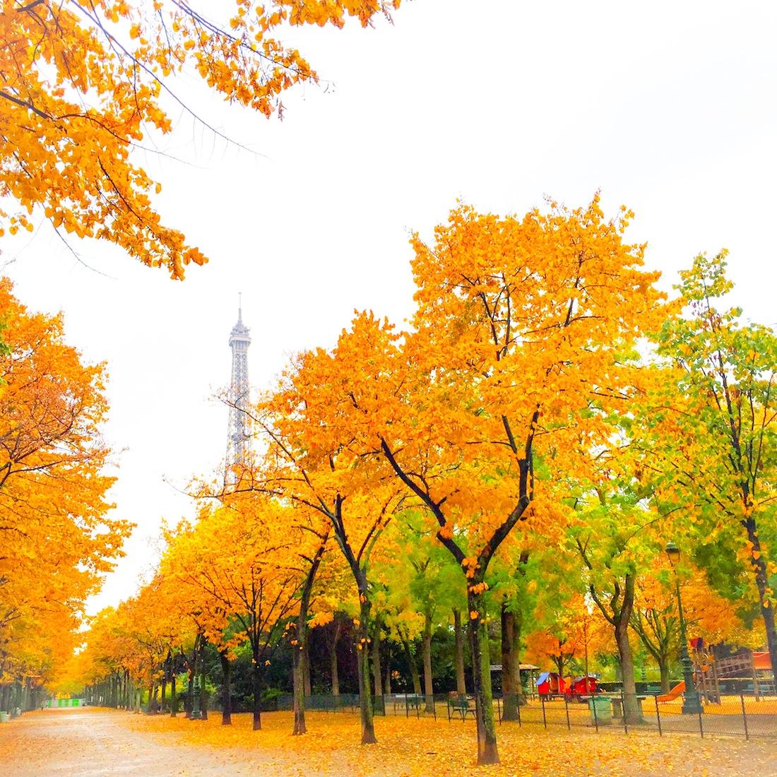 Fall 2- Paris