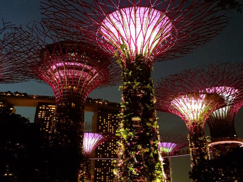 gardens by the bay- foto em singapura
