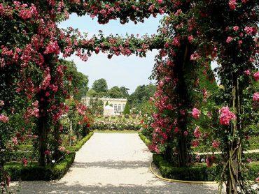 bagatelle- jardins da França
